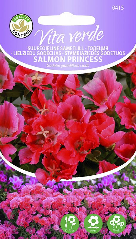 Suureõieline sametlill Salmon Princess