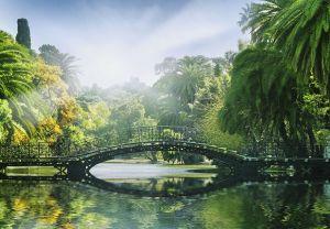 Fototapeet Bridge