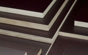 Veekindel vineer kask F/F, 15 x 625 x 1250 mm