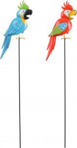 Aiakaunistus Papagoi 6 x 14 x 95 cm