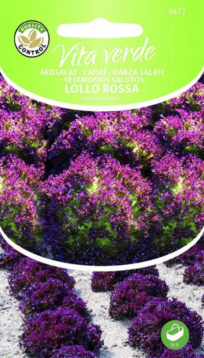 Lehtsalat Lollo Rossa