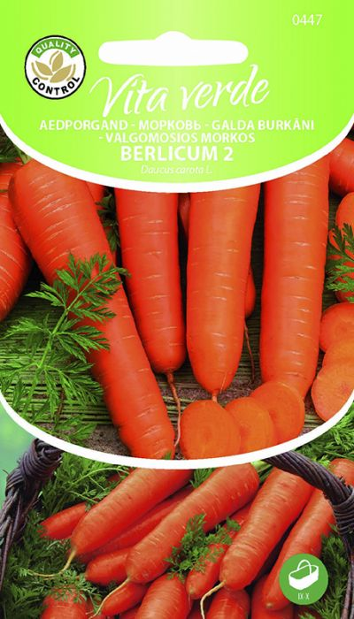 Porgand Berlicum 2