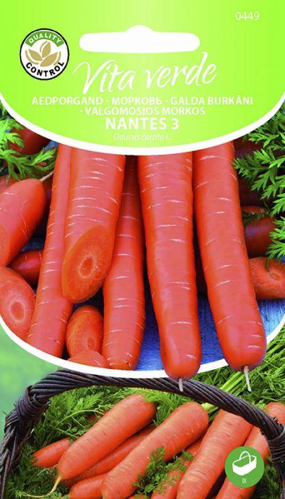 Porgand Nantes 3