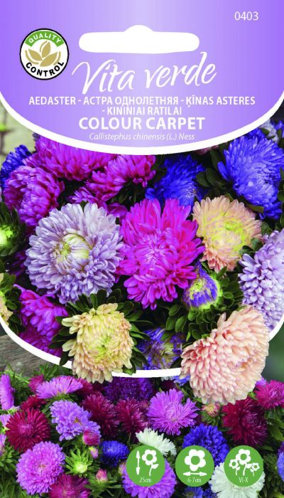 Aedaster Colour Carpet segu