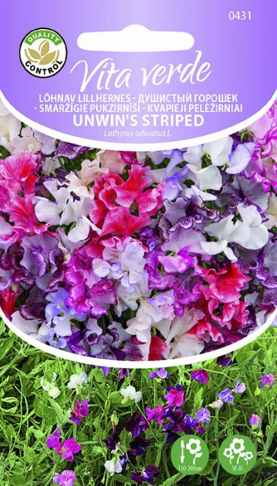 Lõhnav lillhernes Unwins Striped