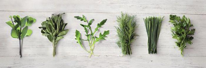 Sisustuspilt Reinders Kitchen Herbs