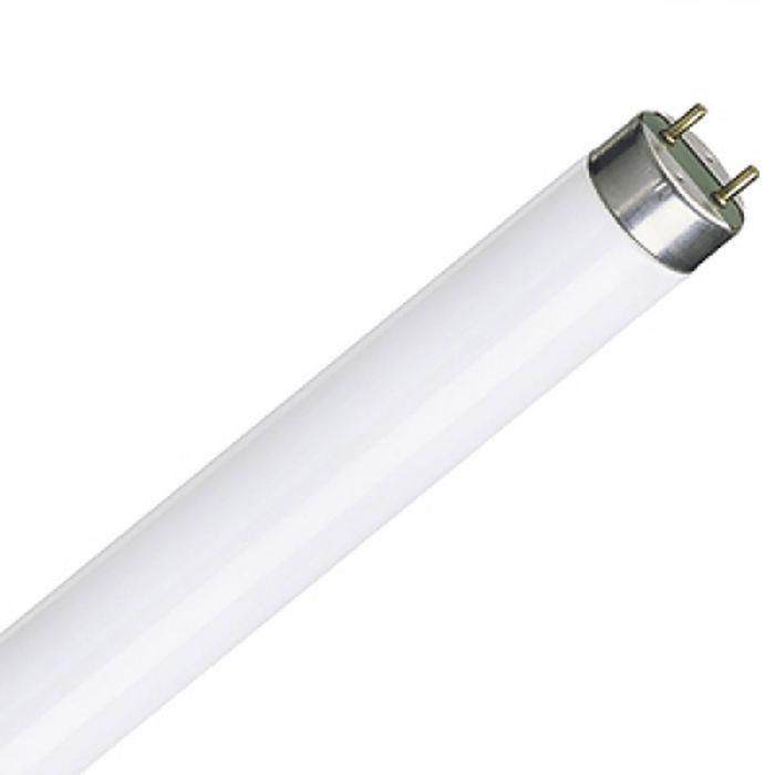 Luminofoorlamp Spectrum WOJ+21118 T8