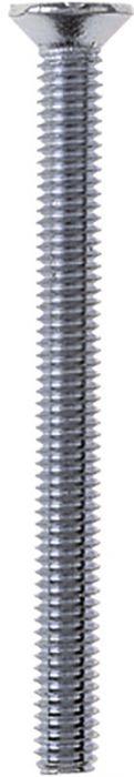 Metallikruvid PH 3 x 10 mm 100 tk