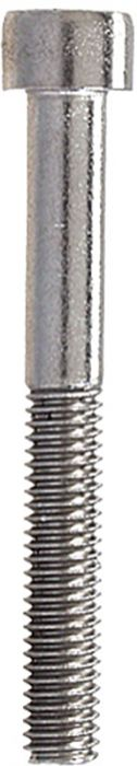 Sisekuuskantpoldid Profi Depot DIN912 A2, 6 x 16 mm, 100 tk