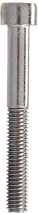 Sisekuuskantpoldid Profi Depot DIN912 A2, 6 x 40 mm, 100 tk
