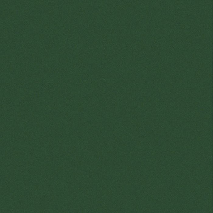 Staatiline kile roheline 45 x 200 cm