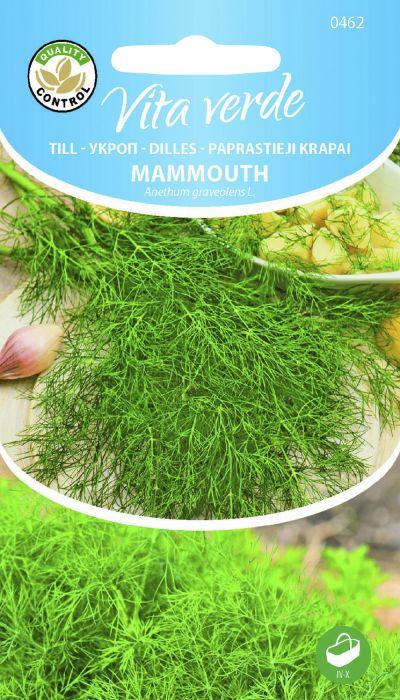 Till Mammouth