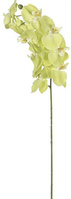 Kunstlill orhidee roheline 76 cm