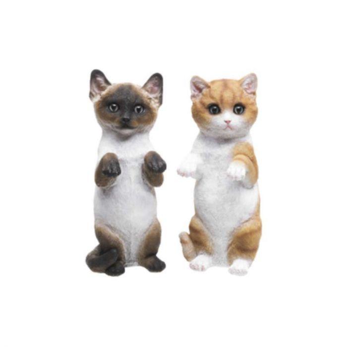 Aiakaunistus kassipoeg