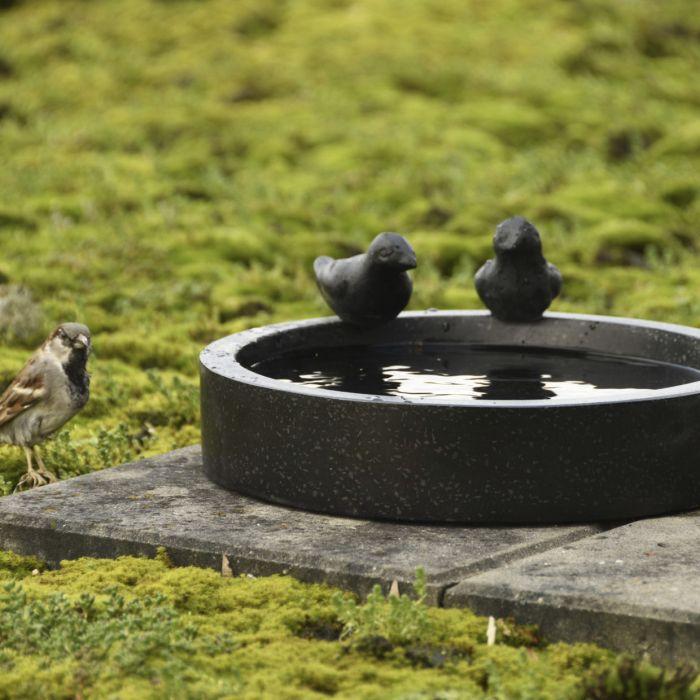Jooginõu lindudele ümar