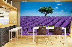 Fototapeet Provence 8-osaline
