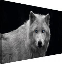 Sisustuspilt Reinders White Wolf