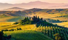 Sisustuspilt Tuscan Valley