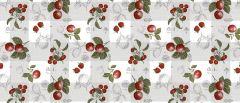 Vahariie Bonita Puuviljad ja maasikad
