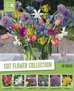 Kevadlillede mix Flower 40 tk